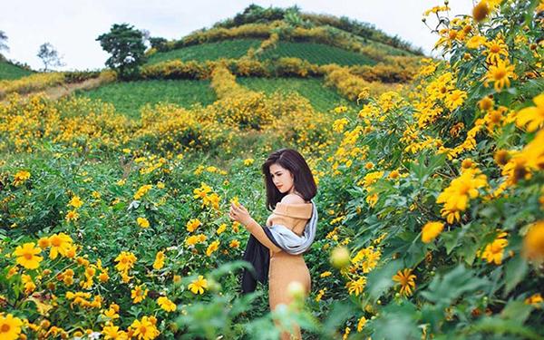 Hãy diện trang phúc hài hòa màu sắc khi ngắm hoa